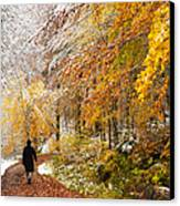 Fall Or Winter - Autumn Colors And Snow In The Forest Canvas Print