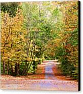Fall Pathway Canvas Print by Judy Vincent