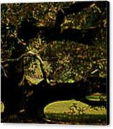 Fall Rising Canvas Print by Odd Jeppesen