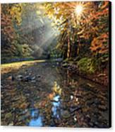 Fall Sparkle Canvas Print