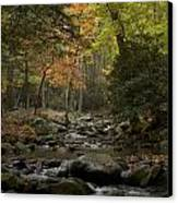 Fall Stream Cades Cove Gsmnp Canvas Print by Paul Herrmann