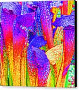 Fantasy Flowers Canvas Print