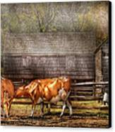 Farm - Cow - A Couple Of Cows Canvas Print by Mike Savad