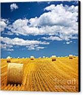 Farm Field With Hay Bales Canvas Print