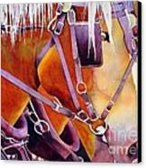 Farm Horses Canvas Print by Robert Hooper