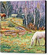 Farm Pleasure Canvas Print