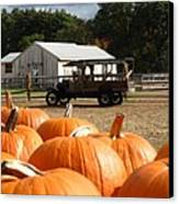 Farm Stand Pumpkins Canvas Print by Barbara McDevitt