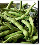 Farmers Market Green Beans Canvas Print by Ann Powell