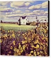 Farmhouse And Grapevines Canvas Print