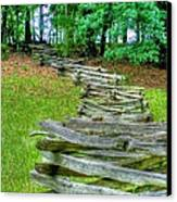 Fence Line Canvas Print by Dan Stone