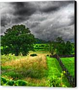 Fenced Out Canvas Print by Ryan Crane