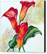 Fiery Callas Canvas Print