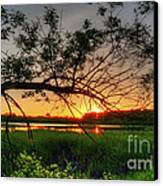 Fiery Swamp Sunset Canvas Print by Deborah Smolinske