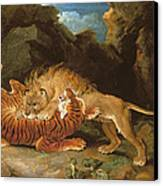 Fight Between A Lion And A Tiger, 1797 Canvas Print by James Ward