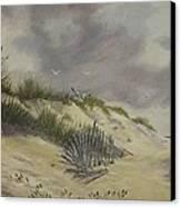 Finding Treasure Canvas Print