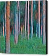 Finland Forest Canvas Print
