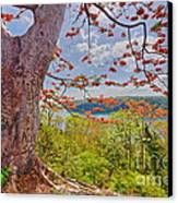 Fire Tree Canvas Print by George Paris