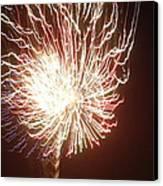 Firework Burst Canvas Print by April Lerro