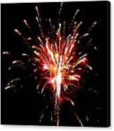 Fireworks 10 Canvas Print by Mark Malitz