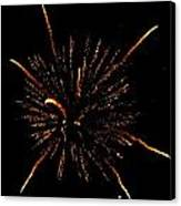 Fireworks 4 Canvas Print by Mark Malitz
