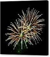 Fireworks 8 Canvas Print by Mark Malitz