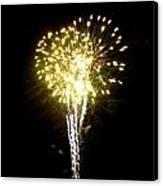 Fireworks 9 Canvas Print by Mark Malitz