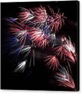 Fireworks 9 Canvas Print by Sandy Swanson