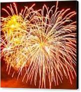Fireworks Flower Canvas Print by Robert Hebert