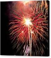 Fireworks Over Washington Dc Canvas Print