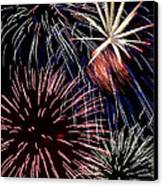 Fireworks Spectacular Canvas Print by Jim and Emily Bush