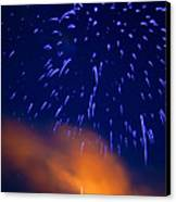 Fireworks Tree Of Life Canvas Print by Kevin Read