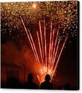 Fireworks Canvas Print by Vonnie Murfin