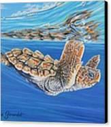 First Dive Canvas Print