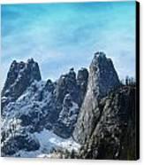 First Season's Snowfall Canvas Print