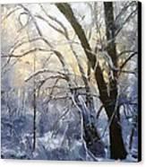 First Snow Canvas Print by Gun Legler