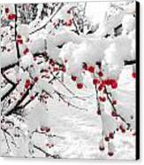 First Snow Canvas Print by Michelle and John Ressler