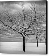 First Snow Canvas Print by Randy Hall