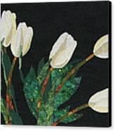 Five White Tulips  Canvas Print by Lynda K Boardman