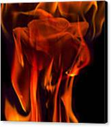 Flaming Rose Canvas Print