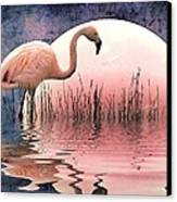 Flamingo Moon Canvas Print by Sharon Lisa Clarke