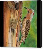 Flicker Canvas Print by Amy Reisland-Speer