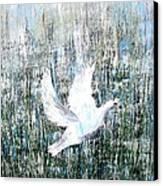Flight Against Odds Canvas Print by Karunita Kapoor