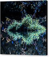 Floating Island Canvas Print by Leif Sohlman