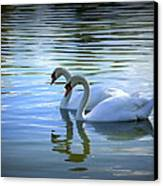 Floating On Glass Canvas Print by Laurie Perry
