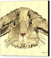 Floppy Bunny Canvas Print by Elizabeth S Zulauf