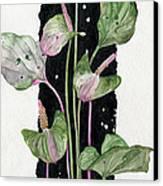 Flower Anthurium 02 Elena Yakubovich Canvas Print by Elena Yakubovich