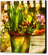 Flower - Daffodil - A Pot Of Daffodil's Canvas Print by Mike Savad