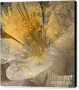 Flower IIi Canvas Print by Yanni Theodorou