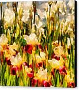 Flower - Iris - Mildred Presby 1923 Canvas Print by Mike Savad