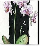Flower Orchid 02 Elena Yakubovich Canvas Print by Elena Yakubovich